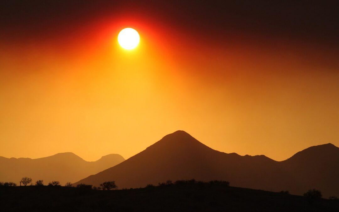 Wildfire Season and Your Respiratory Health